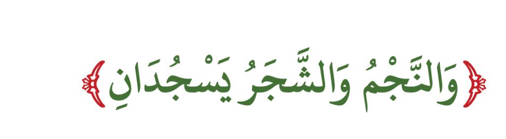 Er-Rahman, 7