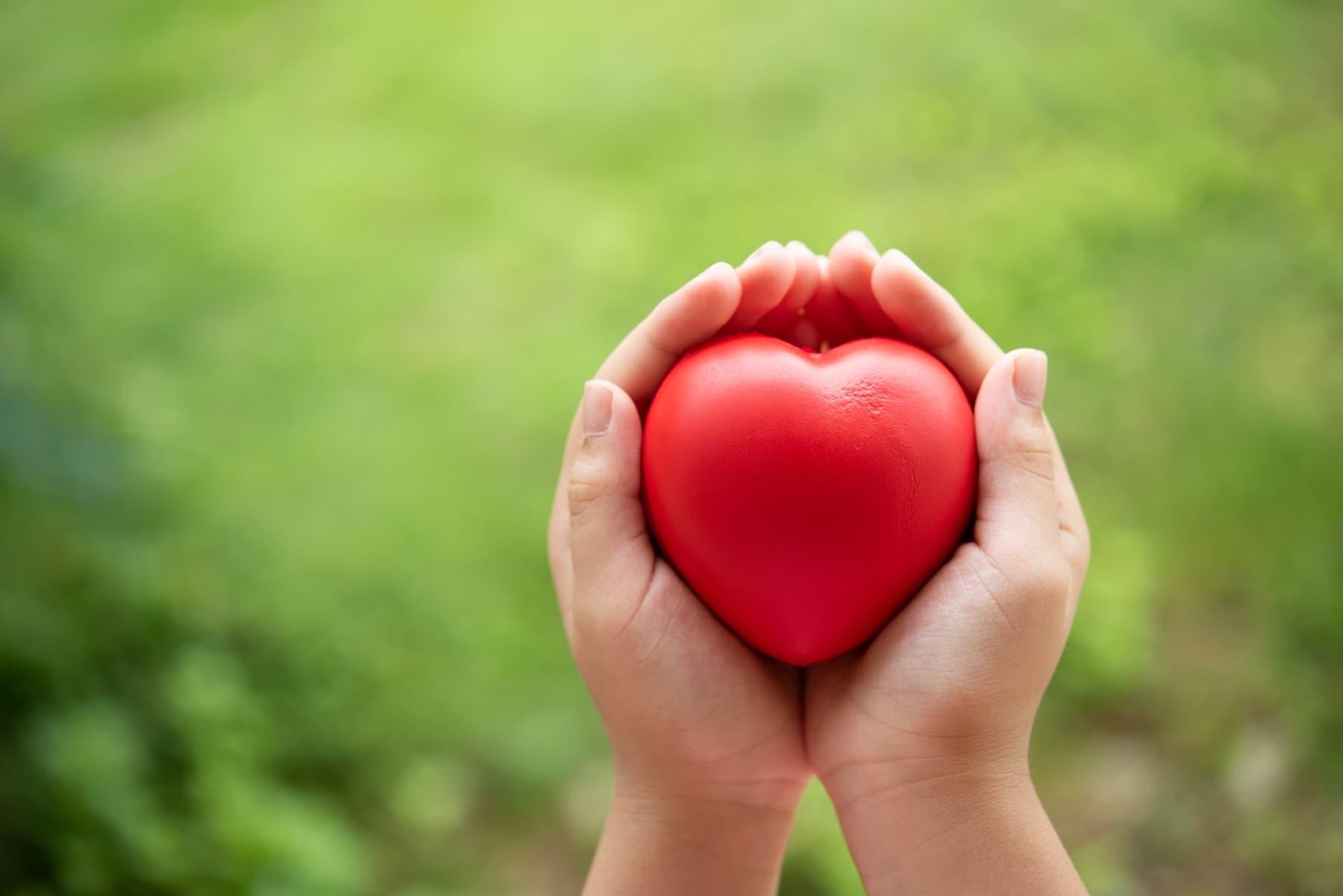 Razlika između srca i uma
