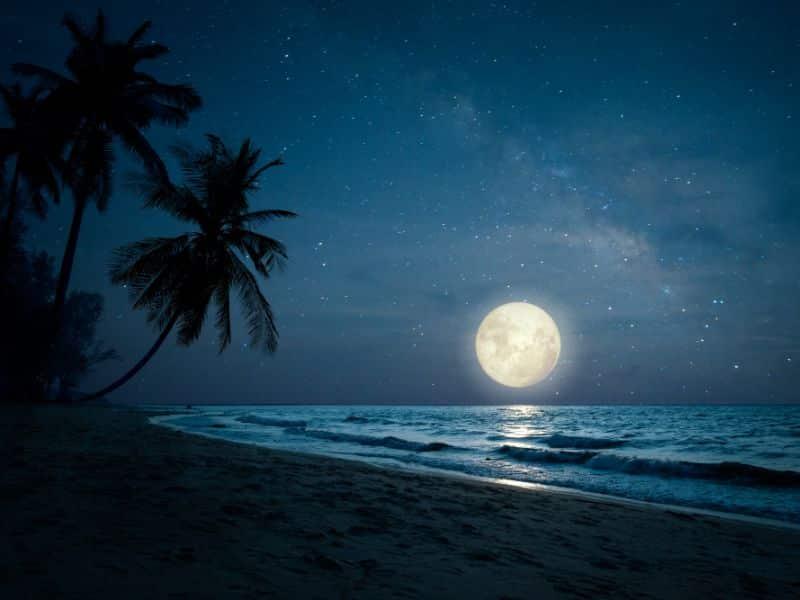 Islamski sanovnik | Snovi na slovo H Značenje snova u islamu Islamski sanovnik Sanovik na slovo H Najtačnije tumačenje snova Sanjati na slovo H Značenje snova